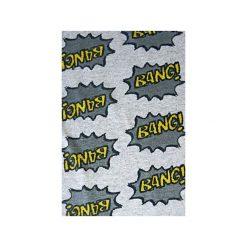 Minispódniczki: Spódnica BANG szara