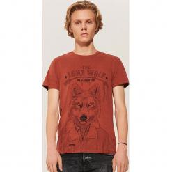 T-shirt z wilkiem - Brązowy. Brązowe t-shirty męskie House, l. Za 39,99 zł.