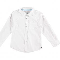 Koszula w kolorze białym. Białe koszule chłopięce Paglie, New G.O.L & more, z bawełny, z włoskim kołnierzykiem. W wyprzedaży za 49,95 zł.