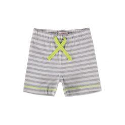 Odzież chłopięca: ESPRIT Boys Szorty grey