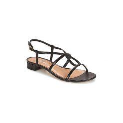 Sandały Betty London  SIGUELLE. Czarne sandały damskie marki Betty London. Za 259,00 zł.