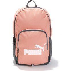 Plecaki damskie: Plecak Phase Backpack