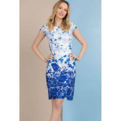 Sukienki: Sukienka z barwionej koronki