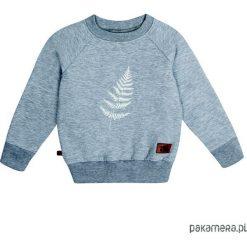 Bluzy chłopięce rozpinane: Bluza flora 04