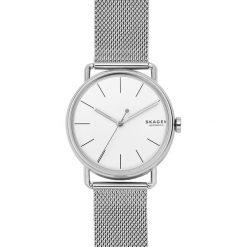 Zegarek SKAGEN - Falster SKW6399 Silver/Silver. Szare zegarki męskie Skagen. Za 969,00 zł.