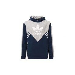 Bluzy chłopięce: Bluzy dresowe Dziecko adidas  Bluza z kapturem Fleece