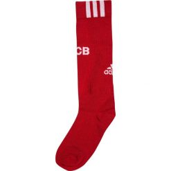 Adidas Performance FC BAYERN MÜNCHEN SET Krótkie spodenki sportowe true red/white. Czerwone spodenki chłopięce adidas Performance, z materiału, sportowe. W wyprzedaży za 201,75 zł.