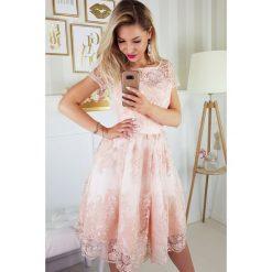 Sukienki: Sukienka koronkowa midi 2135