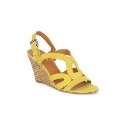 Sandały Ash  JUNE BIS. Żółte sandały damskie Ash. Za 471,20 zł.