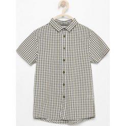 Odzież dziecięca: Koszula z krótkim rękawem - Zielony