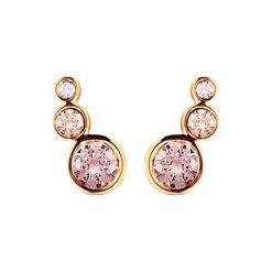 Kolczyki damskie: Kolczyki w kolorze różowego złota z kryształami Swarovski