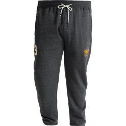 Spodnie dresowe męskie: Santa Monica GARDENA PLUS Spodnie treningowe charcoal 2 tone marl