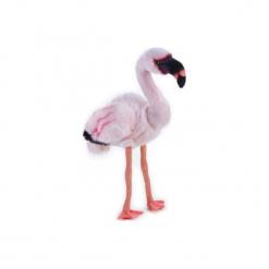 Maskotka DANTE National Geographic Flaming. Różowe przytulanki i maskotki marki DANTE, z materiału. Za 76,90 zł.
