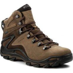 Buty trekkingowe męskie: Ecco Buty męskie Terra Evo brązowe r. 43 (82650458923)