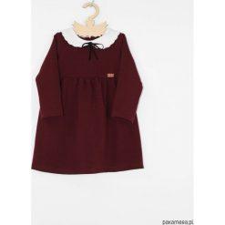 Sukienka z kolnierzykiem i aksamitka. Czerwone sukienki dziewczęce z falbanami Pakamera, z długim rękawem, długie. Za 129,00 zł.