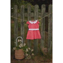 Sukienka Lady in Red. Czerwone sukienki dziewczęce marki Pakamera, w paski, z bawełny. Za 119,00 zł.