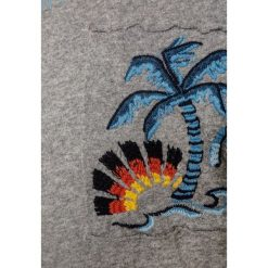 T-shirty chłopięce: Replay Tshirt z nadrukiem grey melange medium
