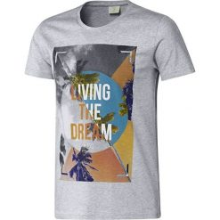 T-shirty męskie: Adidas Adidas T-shirt B89613  szare XS