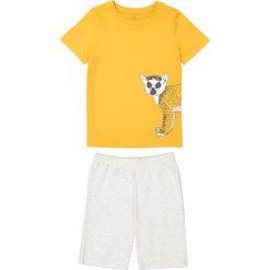 Odzież chłopięca: Piżama z lemurem 3-12 lat