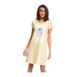 Koszula Parfum 2 612/111. Białe koszule damskie marki NIFE, eleganckie. Za 63,90 zł.