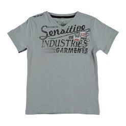 T-shirty chłopięce z nadrukiem: Koszulka w kolorze szarym