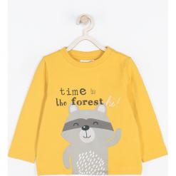 Koszulka. Żółte t-shirty chłopięce z długim rękawem FOREST, z nadrukiem, z bawełny. Za 39,90 zł.