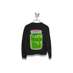 Bluza Pickle Rick Męska. Zielone bluzy męskie marki Soleil, na co dzień, xs, z dekoltem w łódkę, dopasowane. Za 160,00 zł.