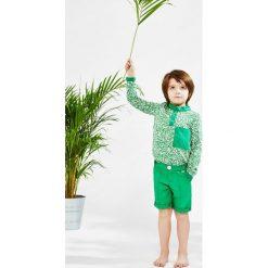 Polo Green Leaves. Zielone t-shirty chłopięce z długim rękawem Pakamera. Za 69,00 zł.