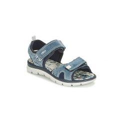 Sandały Dziecko  Primigi  RAPASTIC. Niebieskie sandały chłopięce marki Primigi. Za 160,30 zł.