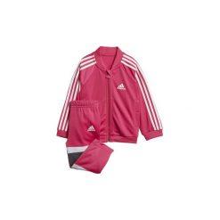 Spodnie dziewczęce: Zestawy dresowe adidas  Dres Shiny