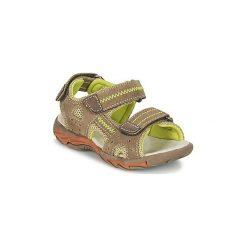 Sandały sportowe Dziecko  Mod'8  BATH. Brązowe buty sportowe chłopięce Mod'8. Za 231,20 zł.