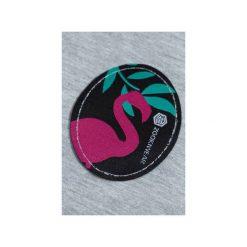 Spodnie dresowe SHAKA Gray Flamingo. Szare spodnie dresowe damskie Zookiwear, l, z aplikacjami, z dresówki. Za 199,00 zł.