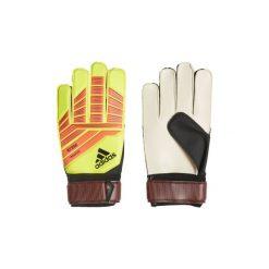Rękawiczki damskie: Rękawiczki adidas  Rękawice treningowe Predator