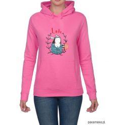 Bluza damska z owieczką. Różowe bluzy rozpinane damskie Pakamera, z nadrukiem, z kapturem. Za 119,00 zł.