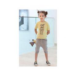 Spodnie niemowlęce: SPODENKI DEL GRAY