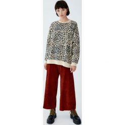 Bluza w panterkę z kontrastowymi ściągaczami. Szare bluzy damskie Pull&Bear, z motywem zwierzęcym. Za 99,90 zł.