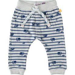 Spodnie niemowlęce: Spodnie dresowe w kolorze niebiesko-kremowym