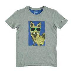 """T-shirty chłopięce z nadrukiem: Koszulka """"Luck of the Draw"""" w kolorze jasnoszarym"""