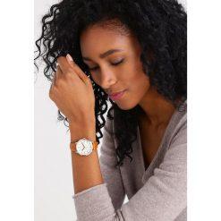 Biżuteria i zegarki damskie: Fossil ABILENE Zegarek chronograficzny dunkelbraun