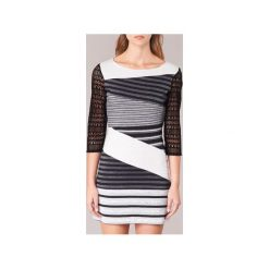 Sukienki krótkie Desigual  GROFE. Szare sukienki mini marki Desigual, s, z krótkim rękawem. Za 335,30 zł.