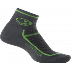 Skarpetki męskie: Icebreaker Skarpetki Mens Multisport Light Mini Oil/Turf S