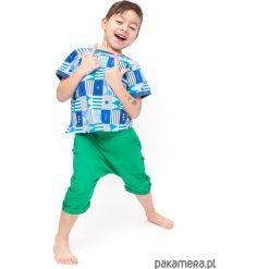 Spodenki zielone. Zielone spodenki chłopięce Pakamera, z bawełny. Za 75,00 zł.