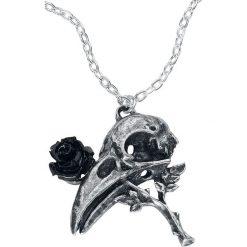 Alchemy Gothic Quietus Rose Naszyjnik srebrny. Szare naszyjniki damskie Alchemy Gothic, srebrne. Za 62,90 zł.