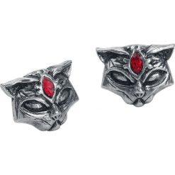 Alchemy Gothic Sacred Cat Studs Kolczyki - Earpin srebrny. Szare kolczyki damskie Alchemy Gothic, srebrne. Za 62,90 zł.