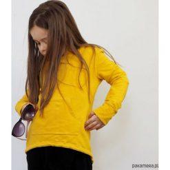 Odzież dziecięca: Bluza frak motyle