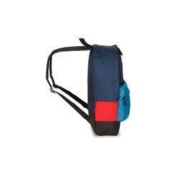 Plecaki Quiksilver  EVERYDAY POSTER. Niebieskie plecaki męskie Quiksilver. Za 111,30 zł.