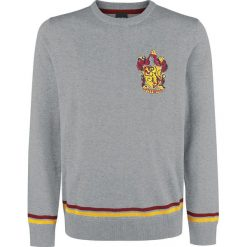 Swetry klasyczne męskie: Harry Potter Gryffindor Sweter szary
