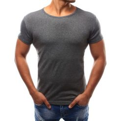 T-shirty męskie: T-shirt męski atracytowy (rx2576)