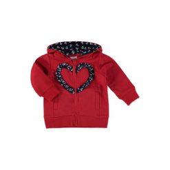 Pink or blue Bluza z kapturem red - czerwony. Czerwone bluzy niemowlęce marki pink or blue, z bawełny, z kapturem. Za 44,00 zł.