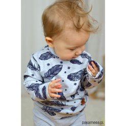Bluzy niemowlęce: Szara bluza dziecięca piórka